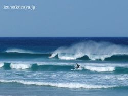 110225surfing01