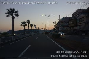 141112shimoda04