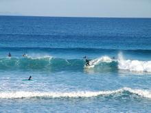 071201surfing02_2